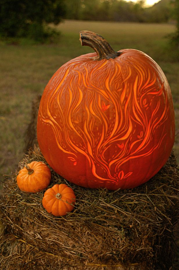 Best pumpkin carving tools ideas on pinterest fruit