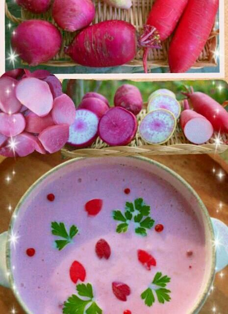 上段左はじは、レディーサラダ、真ん中上は紅芯大根、下は赤大根、左が赤かぶです(o^-^o) 中段は、切り口と、赤かぶを煮てピンク色になった様子です(@^^@)/ 下段は、赤かぶだけで作ったポタージュ♪ レディーサラダと赤かぶの皮で花びらを作って散らしました♪春みたいで、季節外れかな(;A´▽`A 少し辛味はあるものの、美味しかったです♪ こんな綺麗なピンク色になるなんて、感激~(*≧∀≦*) 赤かぶは、切り口が霜降りみたいで、綺麗でした(^-^)v今度はサラダで(^-^)v 漬け物だけじゃ、勿体ないですね(〃^ー^〃) - 252件のもぐもぐ - 赤かぶで♪ぴんくぽたーじゅ by berrymint