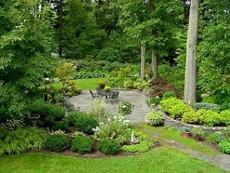 Woodland landscaping ideas mixed shrub border in a for Woodland garden designs
