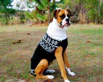 large dog beanie pattern crochet - Bing images