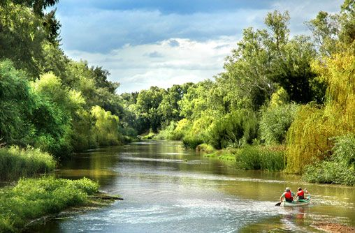 Lachlan River, Cowra