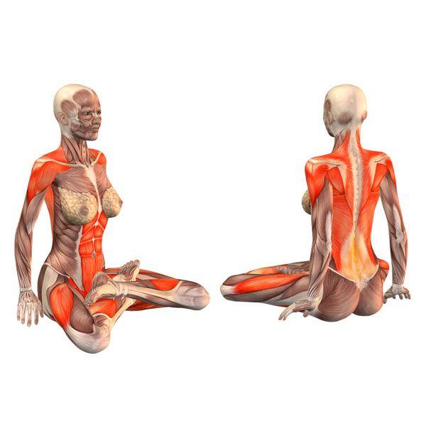 Lotus pose - Padmasana - Yoga Poses | YOGA.com