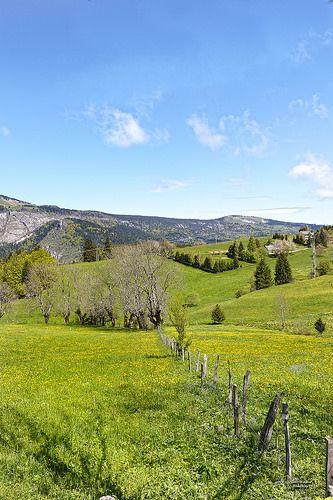 Plateau de St Nizier du Moucherotte.