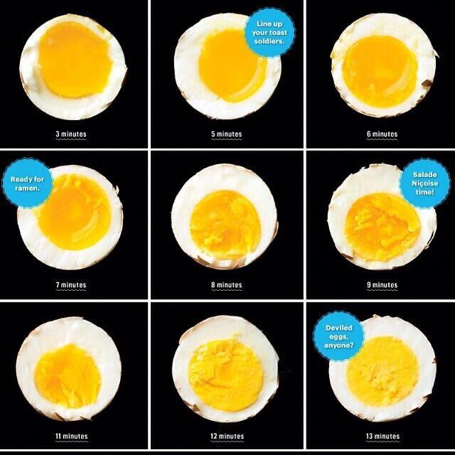 boiled egg diagram | food science | pinterest | boiled egg ... boil diagram