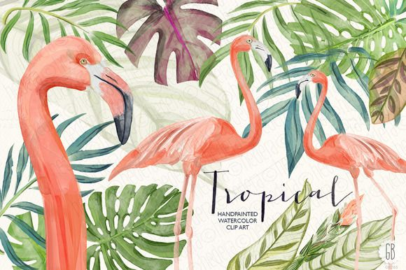 Watercolor tropical leaves flamingo by GrafikBoutique on Creative Market
