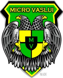Micro Vaslui