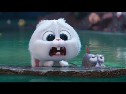 The Secret Life Of Pets 2016 Animation Movies In English Hd 09 Youtube Animated Movies Pets Movie Secret Life Of Pets