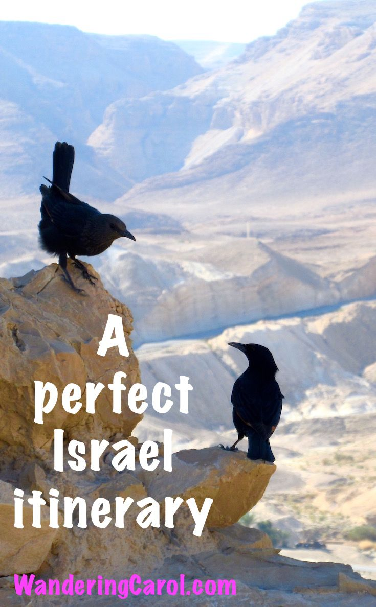 Planning a trip to Israel? Not sure where to go. Here is a great one-week itinerary that shows you the top sites and cities. http://wanderingcarol.com/israel-itinerary/