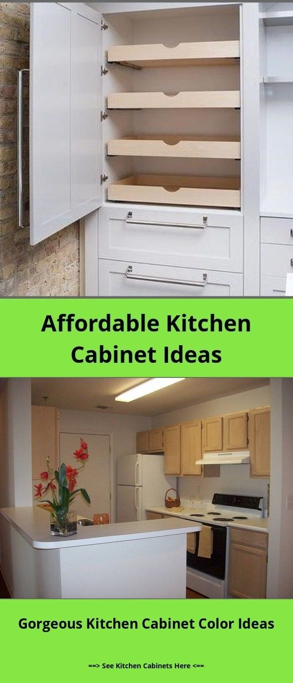 Best Diy Kitchen Cabinet Ideas And Designs For 2019 And Diy Kitchen Cabinets Builders Warehouse Budget Diy Kitchen Cabinets Kitchen Cabinets Kitchen Cabinetry