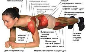 Здоровье в наших руках: Универсальная зарядка - всего одно упражнение Планка!