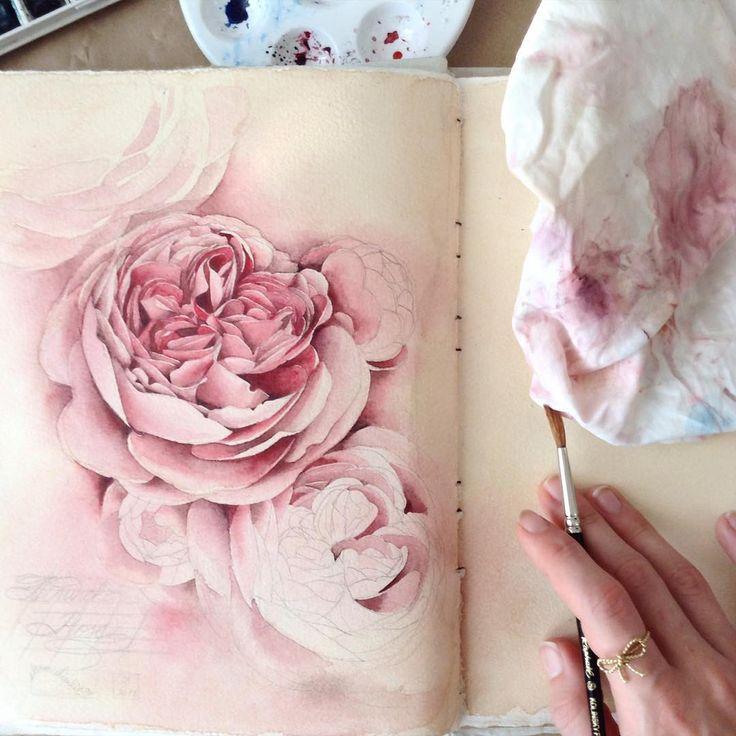 «Alnwick Roses || #limkina #limkina_art || Рисовать с зубной болью -- что-то новенькое »