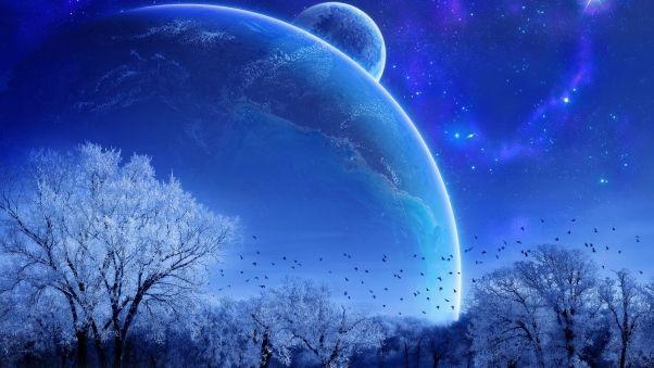 Wallpaper winter, trees, birds, planets, stars