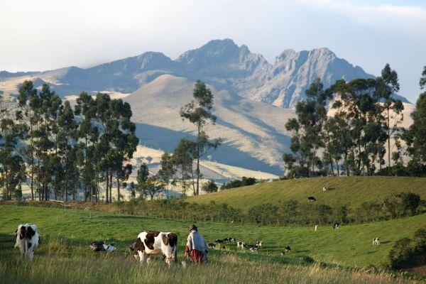 Ruminahui - Pichincha - Equateur
