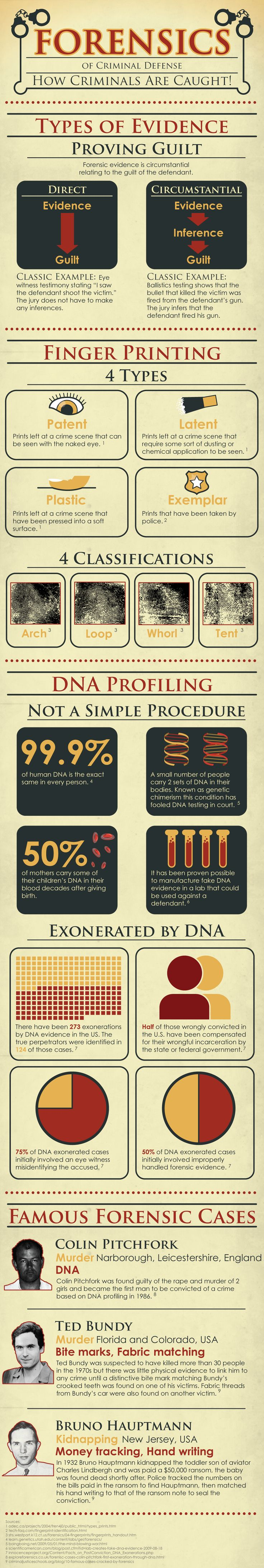 Forensic evidence in criminal cases american lawyers infographic