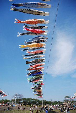 koinobori fish kites flown on may 5th japanese children's day