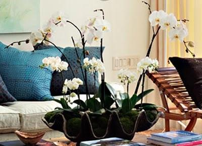25 best arreglos florales con orquideas on pinterest - Plantas artificiales para decoracion ...