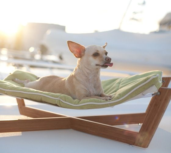 Bambu Hammock Dog Bed / The Bambu Hammock's combination of clean lines, unique sleeping surface and rich eco-friendly materials make it our most sought after design. http://thegadgetflow.com/portfolio/bambu-hammock-dog-bed-220/