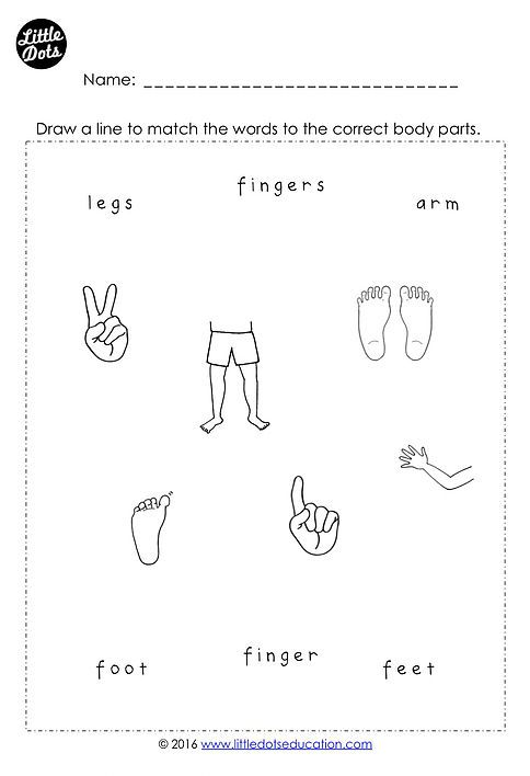 Free body parts printable for preschool, pre-k and kindergarten ...