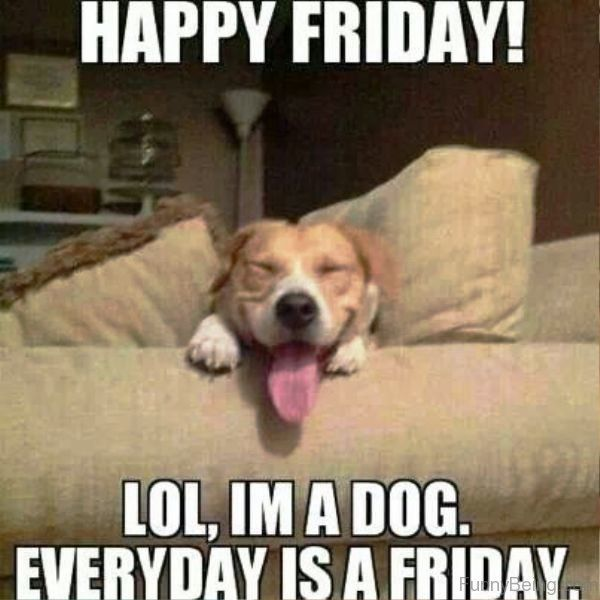 75 Happy Friday Memes That Ll Make Your Weekend A Lot Better Sayingimages Com Funny Puppy Memes Funny Friday Memes Funny Dog Memes