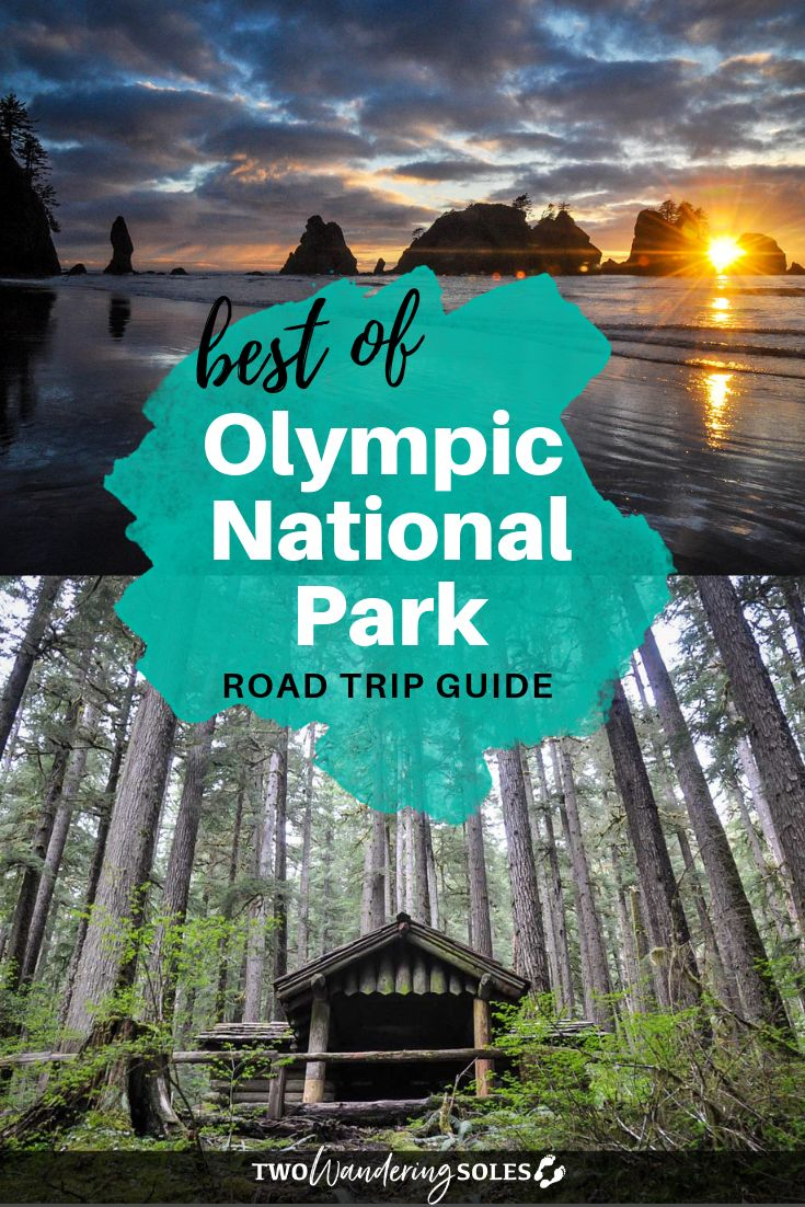 13 Adventurous Things to do in Olympic National Park
