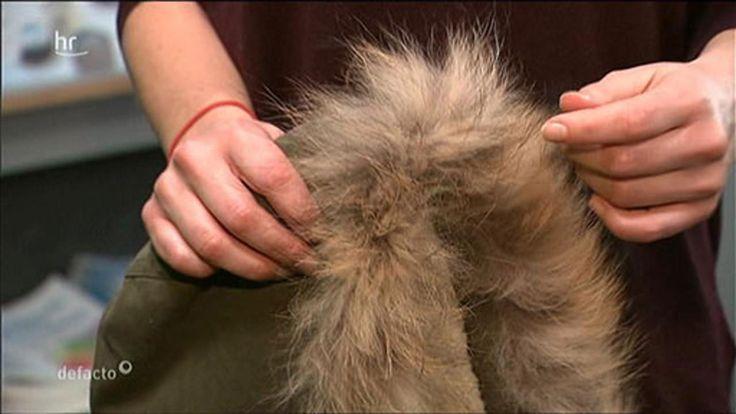 Ein flauschiger Pelzkragen, der Bommel an der Mütze ? Kleidung mit Pelz ist aus der Wintermode nicht wegzudenken. Doch viele Hessen lehnen einen echten Pelz ab. Sie kaufen Kunstpelz - den Tieren ...