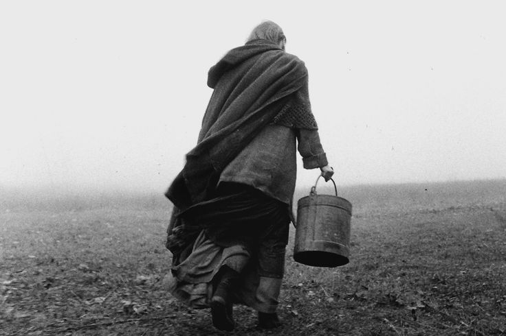 "best of 2012  ""The Turin Horse"" by Béla Tarr"