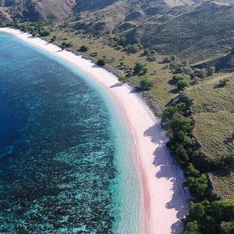 Namo Beach, The Second Pink Beach at Komodo Island.  Di Pulau Komodo, ternyata keindahan pantai yang memiliki pasir berwarna pink tidak hanya bisa ditemui di Pantai Pink atau pink beach saja, tetapi Sobat Jalan juga bisa melihatnya di Pantai Namo yang berada di pulau yang sama.  Photo by : @exploreindonesia  #ExploreNusantara #PesonaIndonesia #SailingKomodo #TamanNaionalKomodo #tukangjalan #travelling #Tour #WisataIndonesia