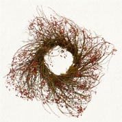 rose hip wreath from Terrain