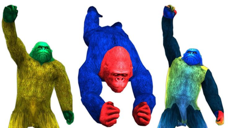 Crazy Gorilla Finger Family Nursery Rhymes Collection For Children Kids ...
