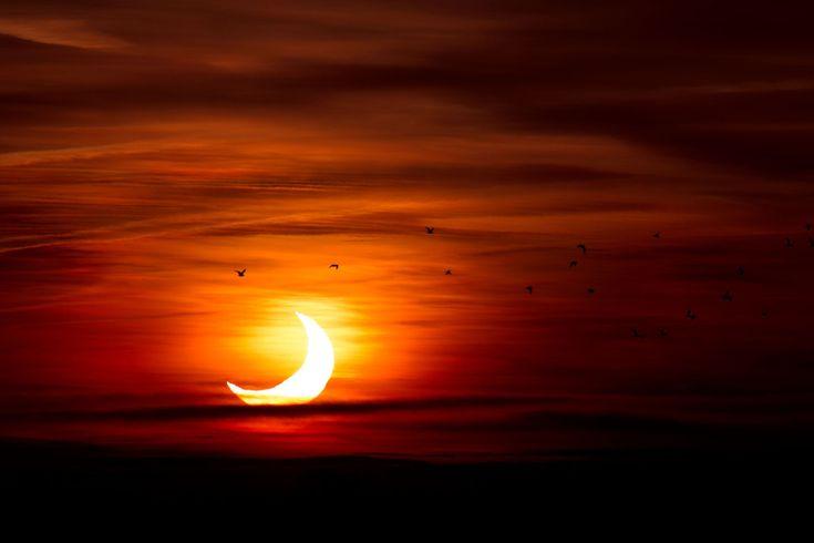 30 epic eclipse photos