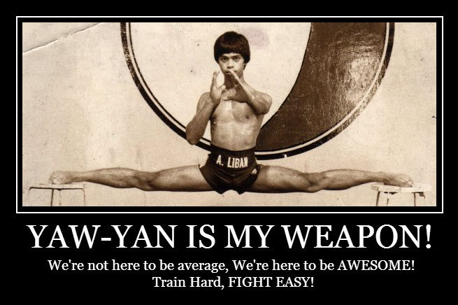We're not here to be average, we're here to be AWESOME!  Train Hard, Fight Easy!  Yaw-Yan Fervilleon Tornado. Yaw-Yan Martial Arts USA HQ. 601 Dover Rd, Ste12 Rockville, MD 20850 (855) 892-9926 info@yawyan.us www.yawyan.us