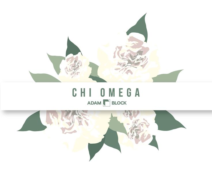 Looking for custom Chi Omega shirts with endless design options? Adam Block makes it easy! • www.adamblockdesign.com