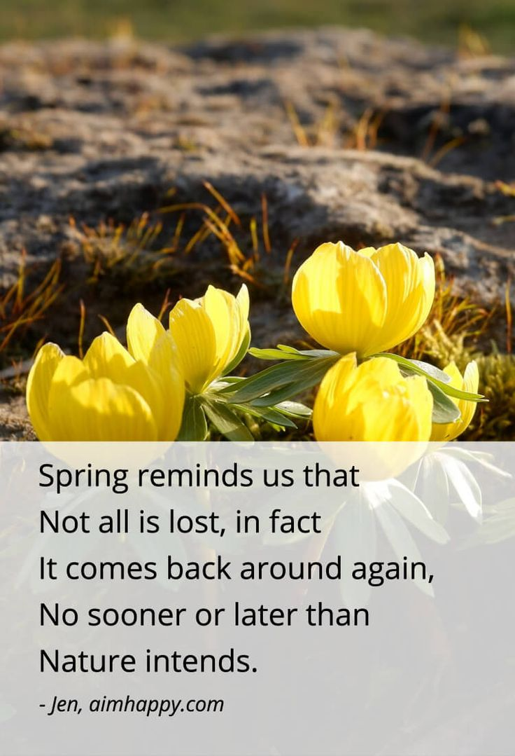 23 Spring Quotes for a Season of Purposeful Growth & Renewal Nature's source of renewal is endless. Since this is a season where we can easily feel the warmth of the sun on our skin and the hope of new growth before us, these spring quotes felt like appropriate nourishment of what's possible from here. No matter what season we're in, it helps to remember that this phase is best when appreciated, richest when enjoyed. It is one step in a voyage. <a class=