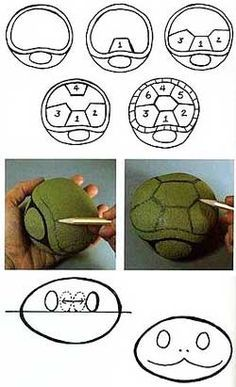 turtle - for kids