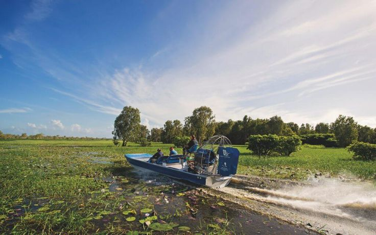 Let us take you where no one else can. A Wildlands Airboat Adventure is a truly unique, an exclusive experience which takes you where no one else can go. Travel through the seemingly endless floodplains of the Mary River spotting crocodiles and countless birds on one of our amazing airboats. This tour is for the …