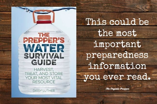 The Prepper's Water Survival Guide: Are You Ready for a Long-Term Water Emergency? | The Organic Prepper