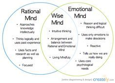 Wise mind is a state of mind that integrates logical thinking with emotional awareness. It is a mindful state in which you make decisions by integrating different ways of knowing and don't cut off parts of your experience. It means integrating our amygdala's intuitive reactions with the wisdom of past experience and knowledge about the world.