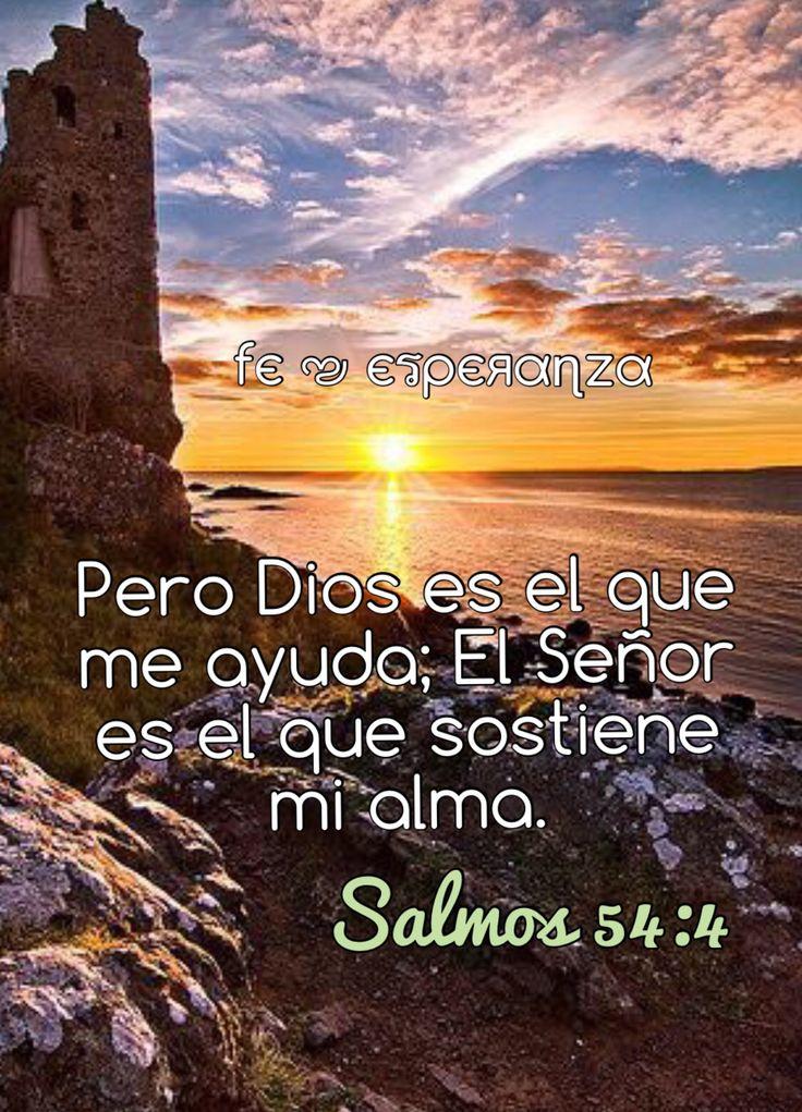 Versiculos De La Biblia De Fe: 215 Best Salmos Images On Pinterest
