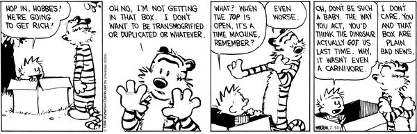 Calvin and Hobbes - You and the box are just plain bad news! :)