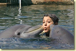 Besides Penguins I love Dolphins and it's my dream to eventually swim with them!