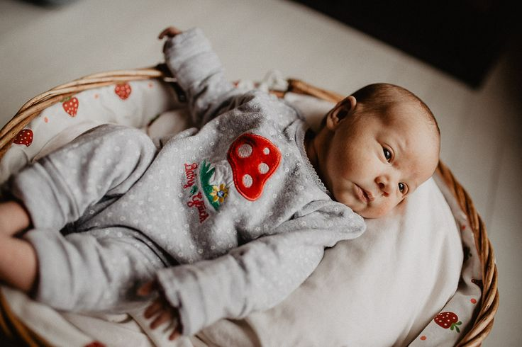 Familie Baby Newborn Magdeburg