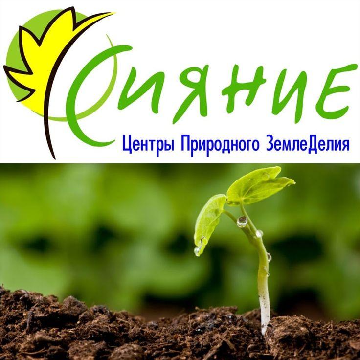 Дмитрий Иванцов – Google+