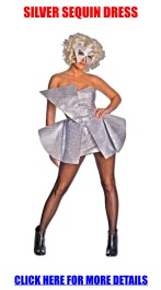 Lady Gaga Silver Sequin Dress Adult Costume: Halloween Costume, Costumes Lady, Dresses, Sequins, Dress Adult, Gaga Silver, Lady Gaga Costumes, Silver Sequin Dress
