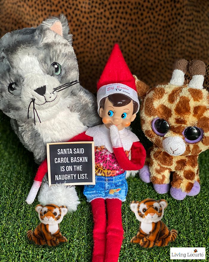 9 Hilarious Stuck at Home Elf Letter Boards Elf letters
