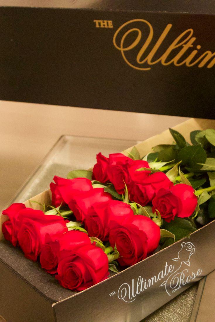 44 best #TheUltimateRose Fan Pics images on Pinterest | Romantic ...
