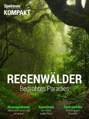 Cover Spektrum Kompakt:  Regenwälder – Bedrohtes Paradies