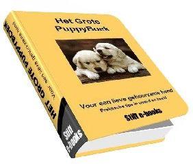 Puppytraining: tips van professionele trainers: http://www.paypro.nl/producten/Het_Grote_PuppyBoek/1976/21328