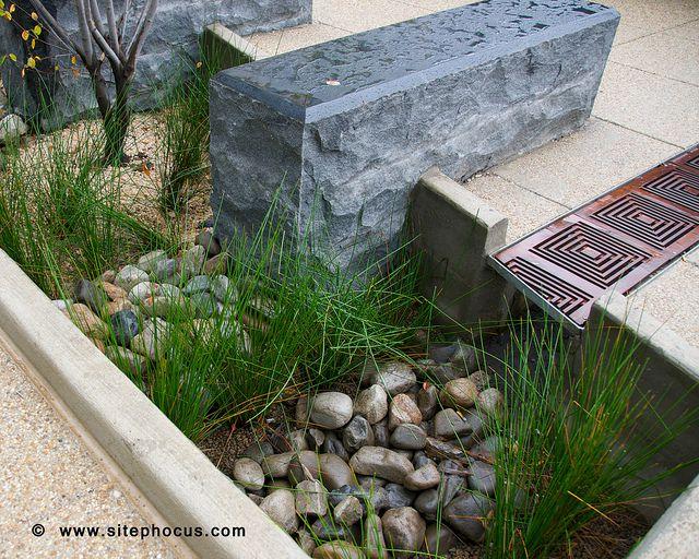 Bioretention/ Rain Garden at Constitution Square in Washington, DC.