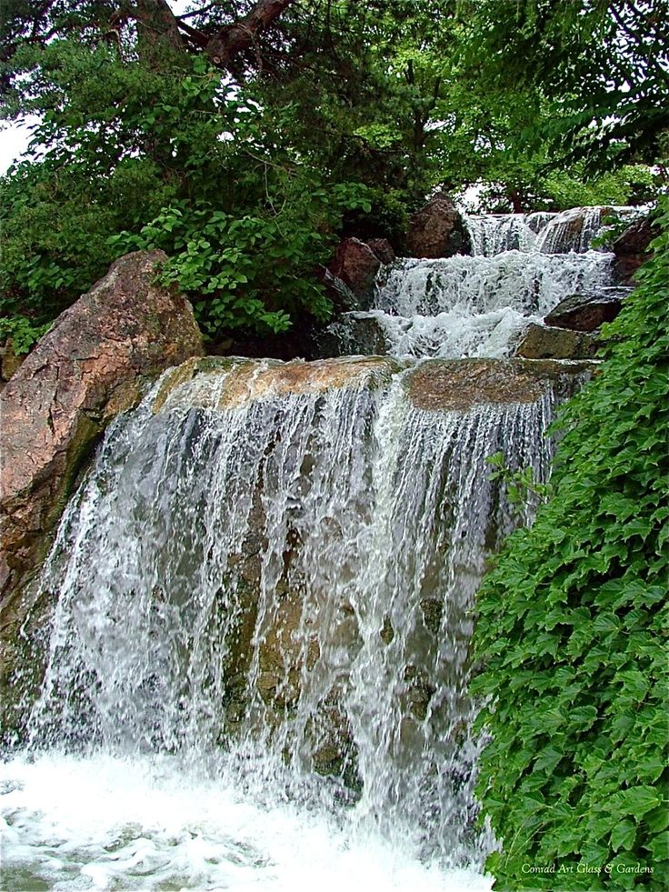 60 best images about chicago botanic gardens on pinterest for Chicago botanic garden membership