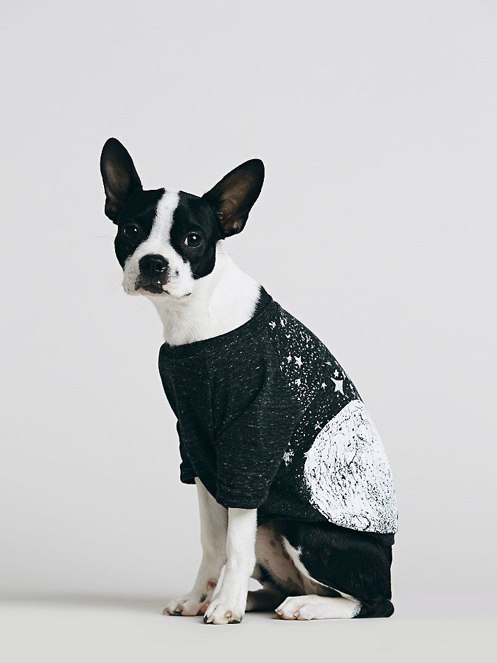 Free People Pet Project Moon And Star Print Doggie Tee At Free People  Clothing Boutique